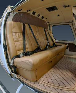 Back Seat-1 (Medium)